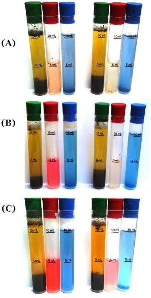 Image of colorimetric chemical soil test tube results in monitoring BSF leachate effect on soil