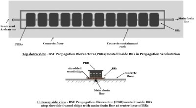 schematic topdown and sideview layout of BSF primary (BR1) and secondary (BR2) bioreactors